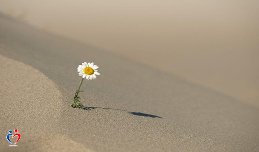 الاهتمام بالعلاقات العاطفية للتغلب على الشعور بالوحدة