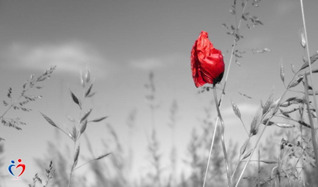 الشعور بالوحدة في العلاقات يعني ان العلاقات غير صحية