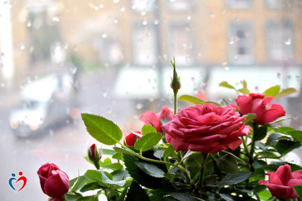 علاقات الحب المؤذي لا تكون مؤذية فقط على المستوى العاطفي