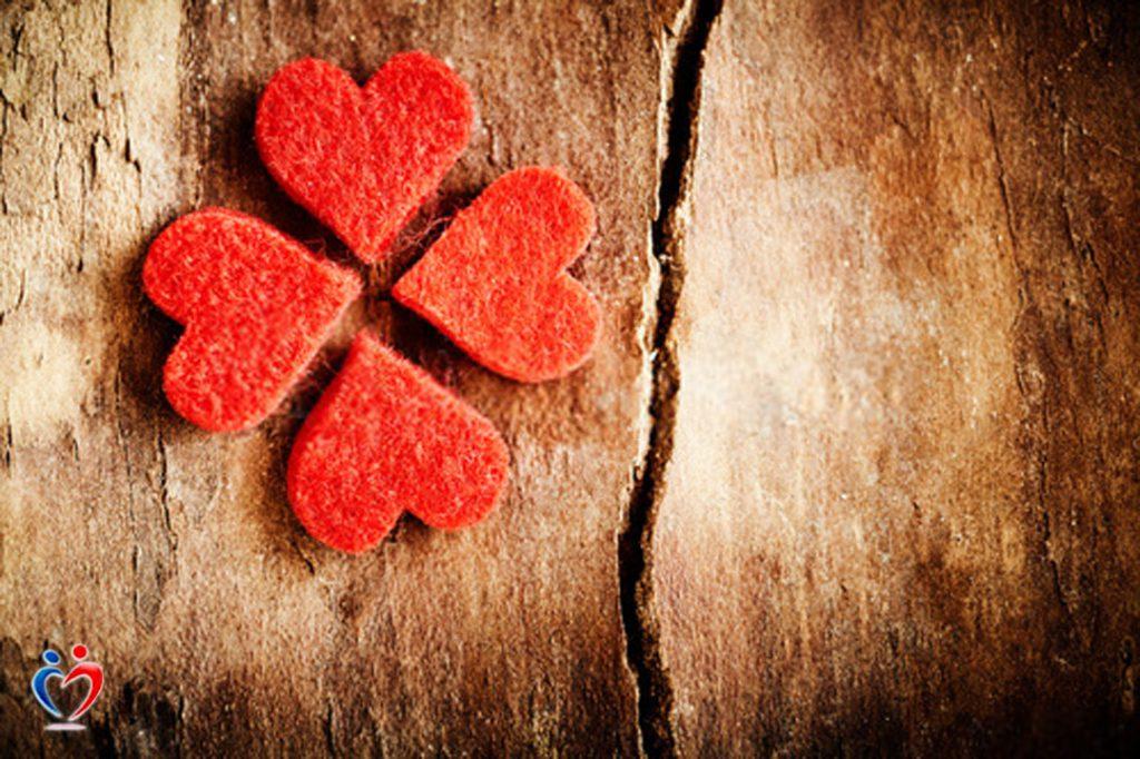 البحث عن تشابه القيم في العلاقة العاطفية