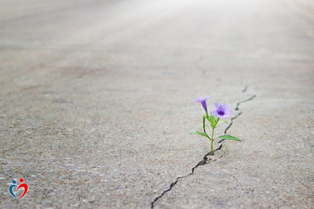 تغيير البيئة المحيطة يساهم في تعزيز مشاعر الأمل في العلاقة العاطفية