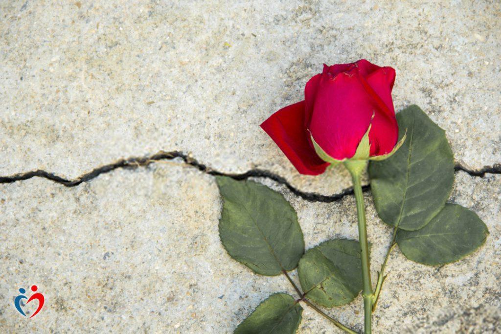 الخوف هو المحرك الرئيسي في العلاقات اليائسة