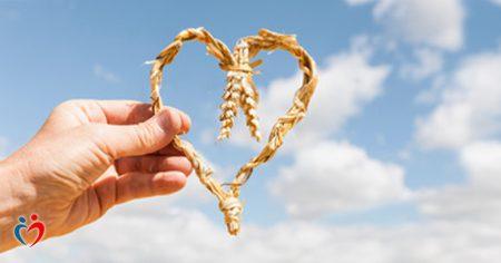 قوة الامتنان و الحب