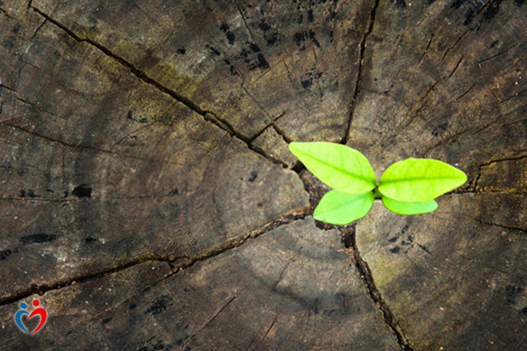 الأمل يقود إلى نشر طاقة إيجابية