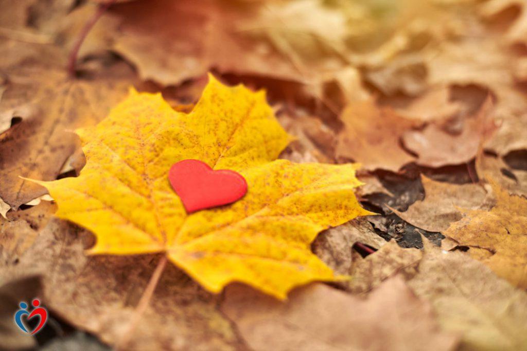 تقبل الماضي من أجل التغلب على تأثير حب الامتلاك