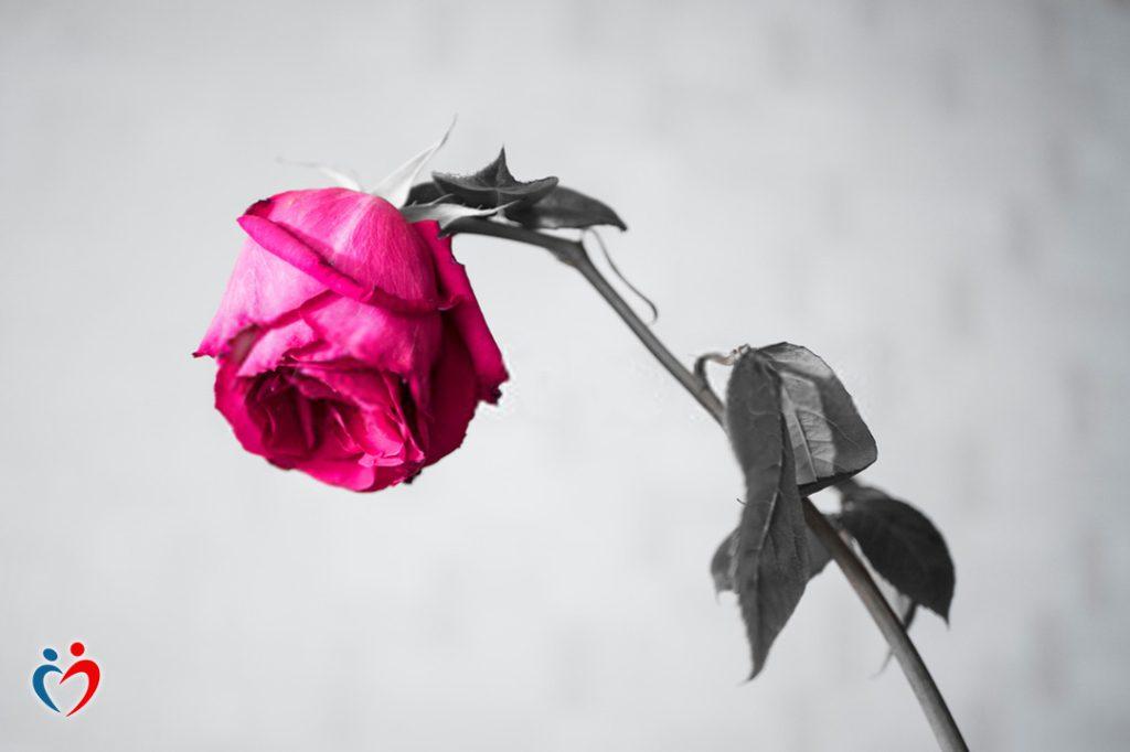 القلق الزائد عن الحد يثير مشاعر الخوف من الالتزام