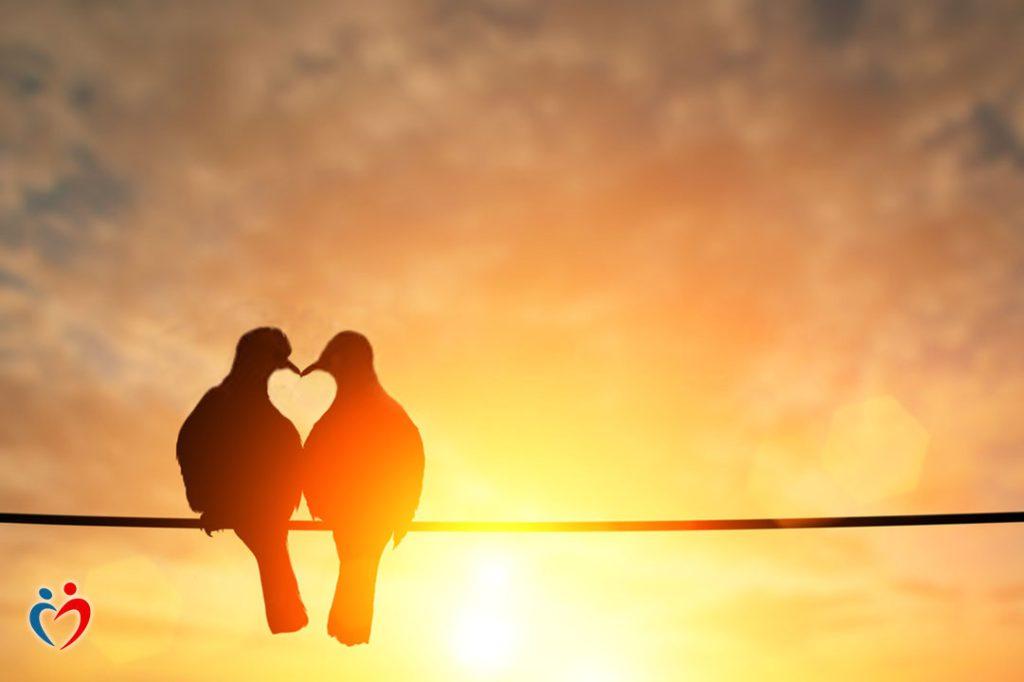 معرفة الاحتياجات كطريقة للتعامل مع التجاهل العاطفي